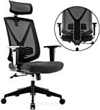 INTEY Chaise de bureau Siège Ergonomique Quadruple protection pour Cervicale, Epaule, Lombaire, Coccyx, Respirant et Confortable pour Réduire la Fatigue, avec Poulie silencieuse, Assemblage modulaire