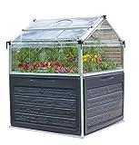 Palram Plant Inn Mini Serre de Jardin - Polycarbonate Transparent  Cadre en Aluminium  Idal pour Faire Pousser des Herbes Aromatiques - Argent
