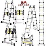 Voluker chelle Tlescopique Pliante 5M (2,5M + 2,5M), chelle Escabeau Tlescopique En Aluminium 16 Echelons, Charge max 150 kg