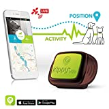 Traceur GPS Kippy VitaS pour Animaux de Compagnie | GPS et Moniteur d'activit pour Chiens et Chats pesant 5kg ou Plus | Ncessite Un abonnement au Service de donnes (Vendu sparment) | Vert