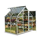 Palram Harmony Serre de Jardin Polycarbonate Transparent, Cadre en Aluminium, Base Incluse  Argent