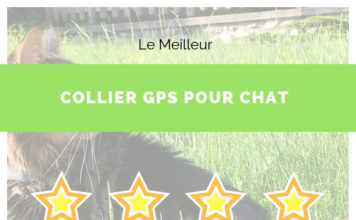 guide collier gps chat