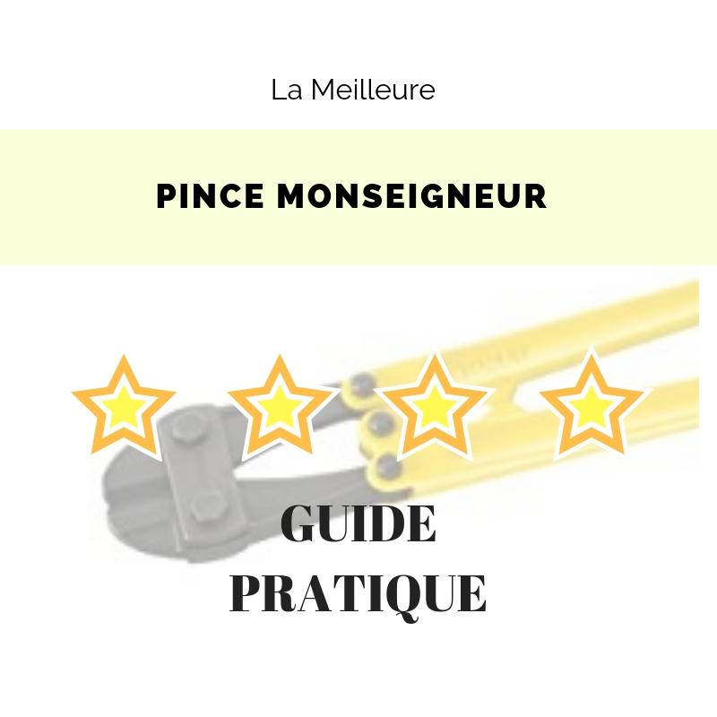 Pince Monseigneur Avis Et Sélection Des Meilleurs